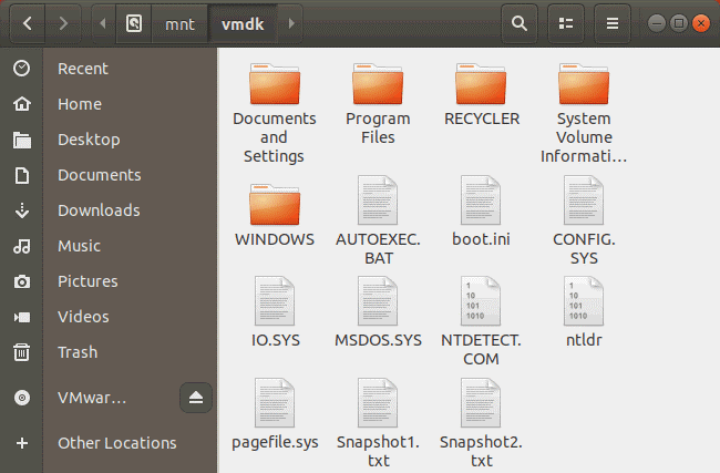 Viewing the content of the vmdk file after mounting the image to the directory on the Linux host machine.
